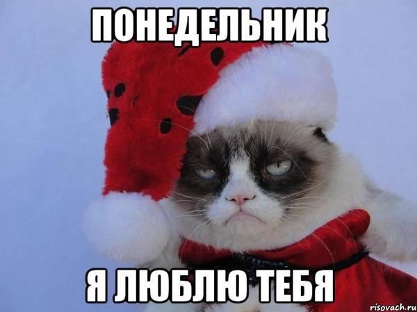 http://sf.uploads.ru/t/Epy8D.jpg