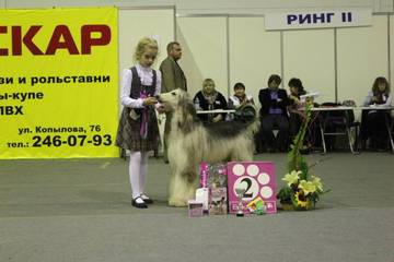 http://sf.uploads.ru/t/Fad63.jpg