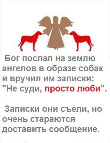 http://sf.uploads.ru/t/GvAj3.jpg