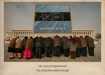 http://sf.uploads.ru/t/H8QrZ.jpg