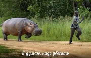 http://sf.uploads.ru/t/HG46h.jpg