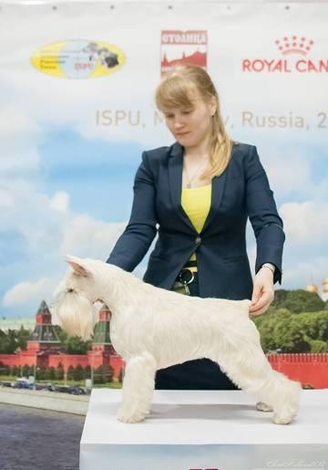 http://sf.uploads.ru/t/Ihpot.jpg