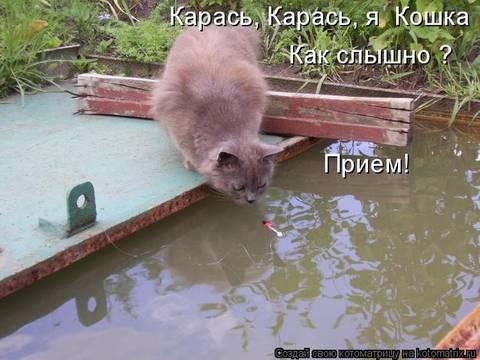 http://sf.uploads.ru/t/JLeO4.jpg