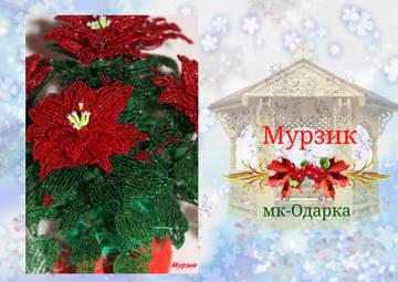 http://sf.uploads.ru/t/Jm8RZ.jpg