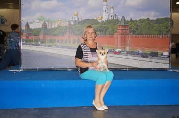 http://sf.uploads.ru/t/K1lMW.jpg