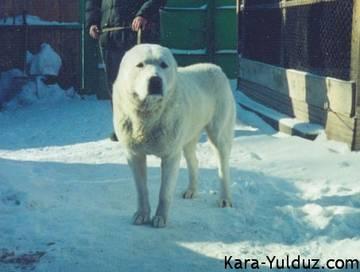 http://sf.uploads.ru/t/K9IZA.jpg