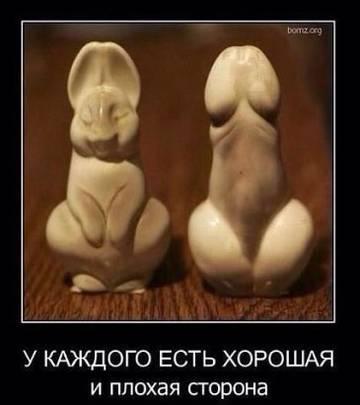 http://sf.uploads.ru/t/KNxCV.jpg