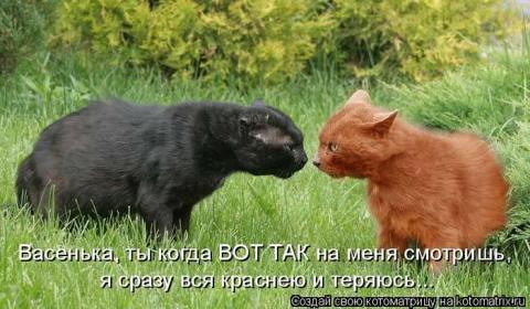http://sf.uploads.ru/t/MD5P4.jpg