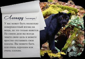 http://sf.uploads.ru/t/MR0Dk.png