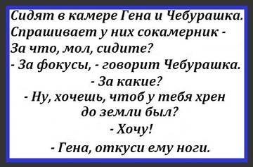 http://sf.uploads.ru/t/NE31i.jpg