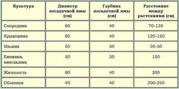 http://sf.uploads.ru/t/OMzKC.jpg