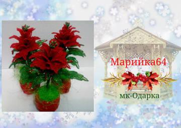 http://sf.uploads.ru/t/Oq5kT.jpg
