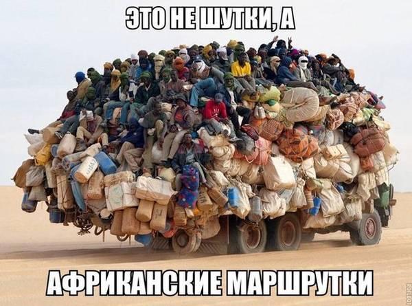 http://sf.uploads.ru/t/PQl7N.jpg