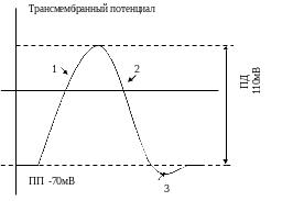 http://sf.uploads.ru/t/PaVyp.png