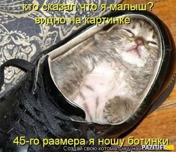 http://sf.uploads.ru/t/PzBmF.jpg