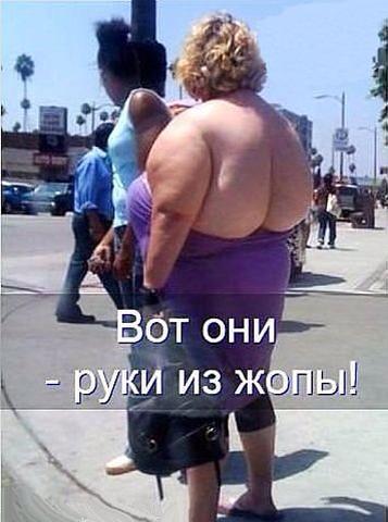 http://sf.uploads.ru/t/Q4IkP.jpg