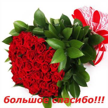 http://sf.uploads.ru/t/Q8YsX.jpg