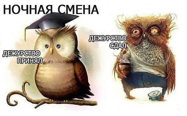 http://sf.uploads.ru/t/QEg7I.jpg