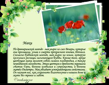 http://sf.uploads.ru/t/QSB0j.png