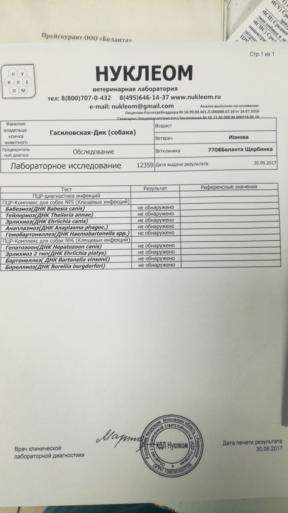 http://sf.uploads.ru/t/Qtv0w.jpg