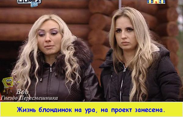 http://sf.uploads.ru/t/R15Ty.jpg
