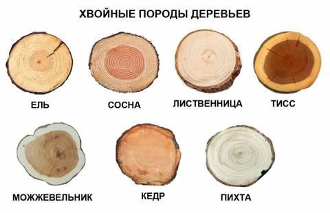 http://sf.uploads.ru/t/RZGcW.jpg