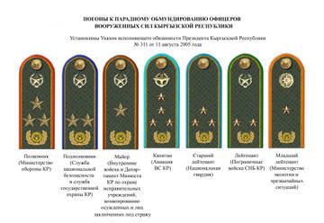 http://sf.uploads.ru/t/RaytZ.jpg