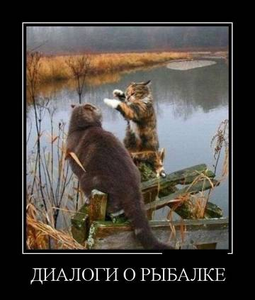 http://sf.uploads.ru/t/TKzGi.jpg
