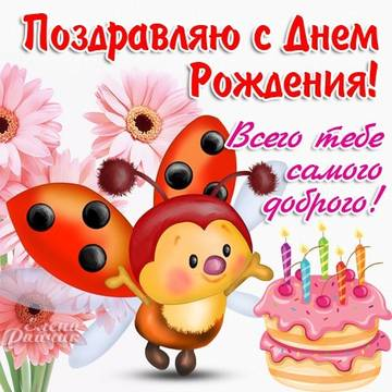 http://sf.uploads.ru/t/TMvX7.jpg