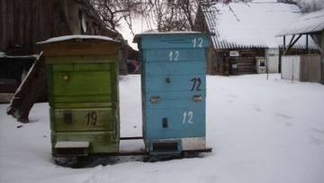 http://sf.uploads.ru/t/Tlask.jpg