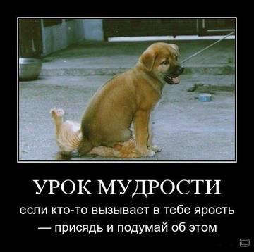 http://sf.uploads.ru/t/Uhs6V.jpg