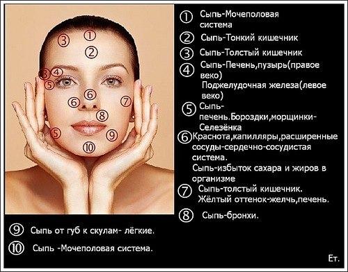http://sf.uploads.ru/t/V6lcX.jpg