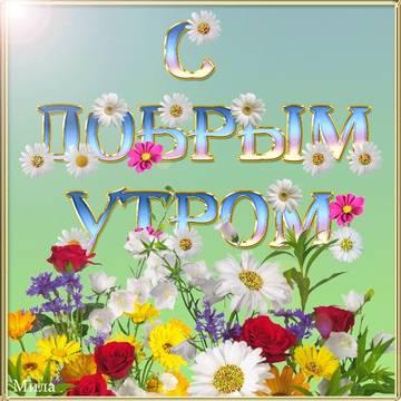 http://sf.uploads.ru/t/VSfyl.jpg
