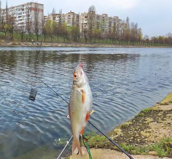 http://sf.uploads.ru/t/Vsq5A.jpg