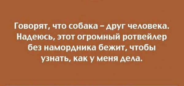 http://sf.uploads.ru/t/XUrtW.jpg