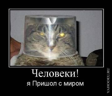http://sf.uploads.ru/t/YDf0j.jpg