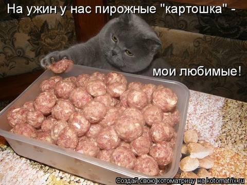 http://sf.uploads.ru/t/Ysfhl.jpg