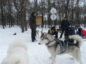http://sf.uploads.ru/t/Yu82w.jpg