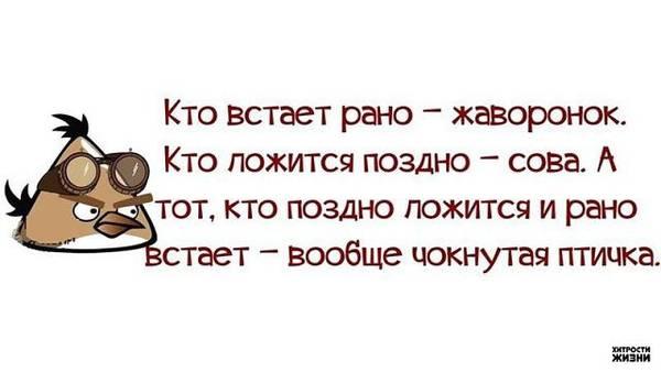 http://sf.uploads.ru/t/ZKVbU.jpg