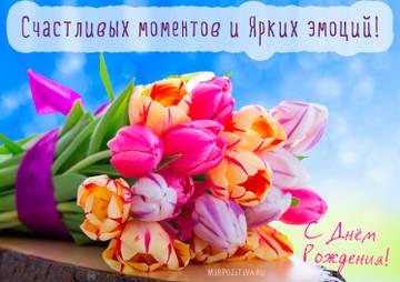 http://sf.uploads.ru/t/ZNvwf.jpg