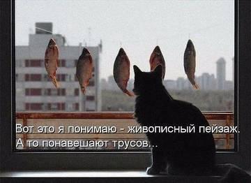 http://sf.uploads.ru/t/aIfgw.jpg