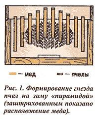 http://sf.uploads.ru/t/bBEm4.jpg