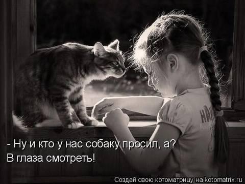 http://sf.uploads.ru/t/bBgWj.jpg