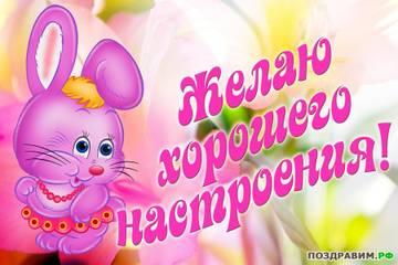 http://sf.uploads.ru/t/bNzIi.jpg