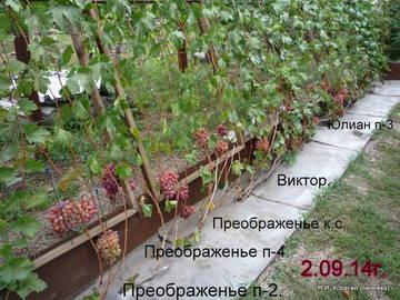 http://sf.uploads.ru/t/bRPnh.jpg