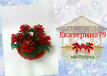 http://sf.uploads.ru/t/ctV63.jpg
