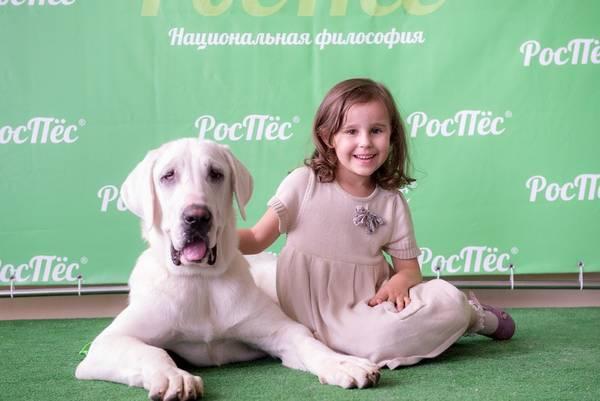 http://sf.uploads.ru/t/dACTG.jpg
