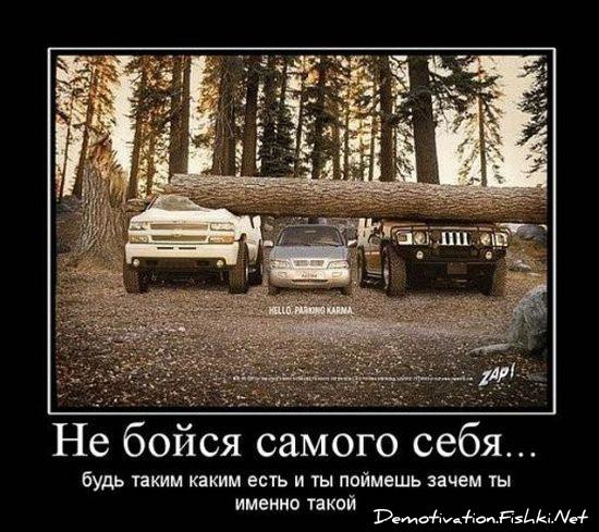 http://sf.uploads.ru/t/dki1a.jpg