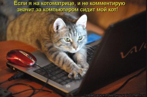 http://sf.uploads.ru/t/ebfBk.png