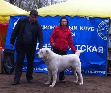 http://sf.uploads.ru/t/edpPZ.jpg